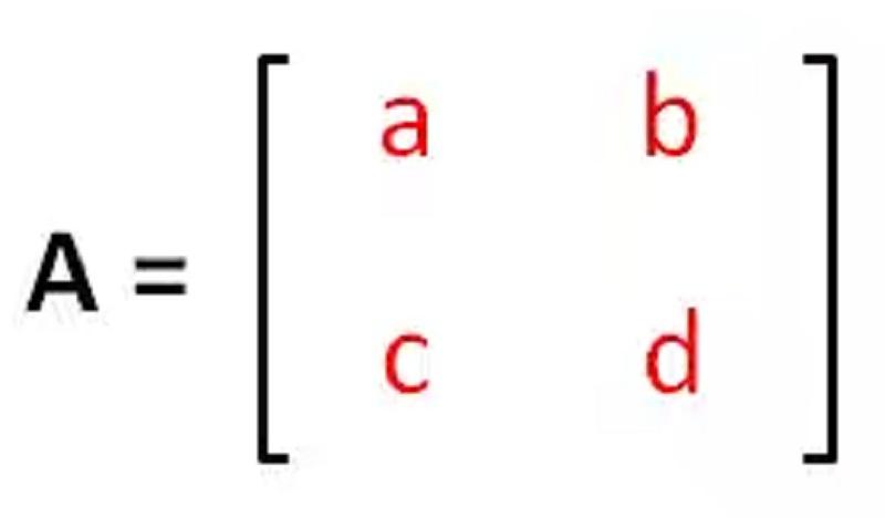 matriks singular