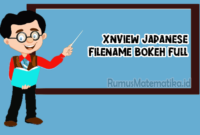 Xnview Japanese Filename Bokeh Full